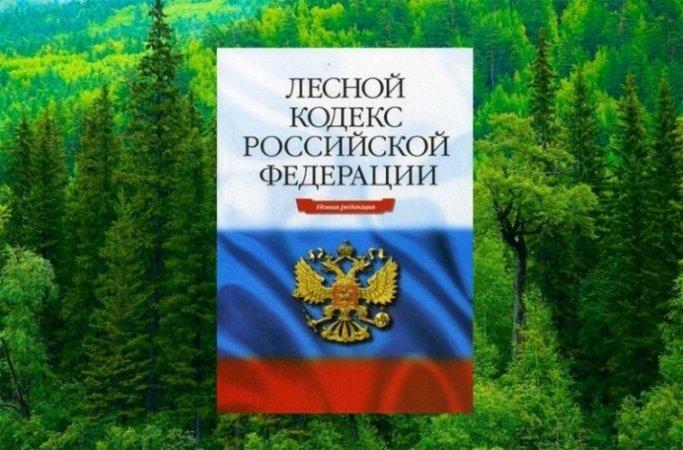 Картинки по запросу Лесной кодекс РФ описание что такое